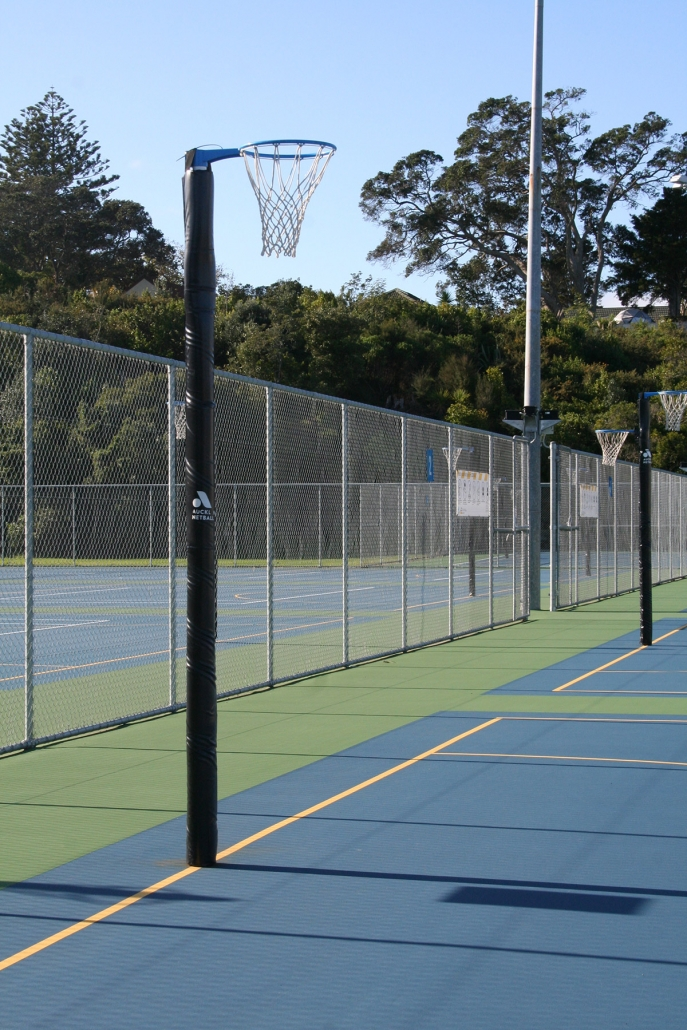 Image of a netball court